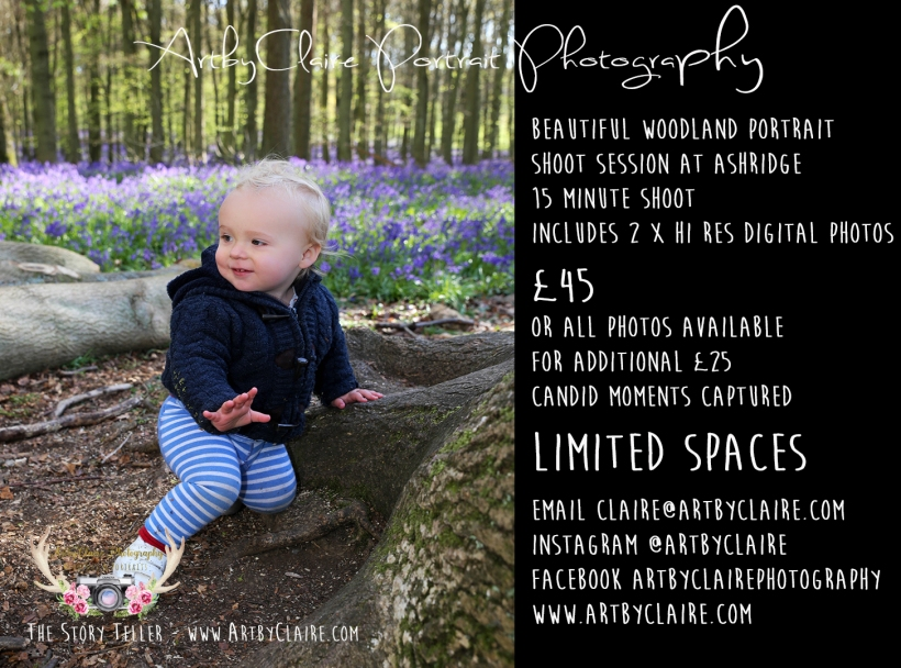 BlueBell Woods Shoots Ashridge by ArtbyClaire Photography